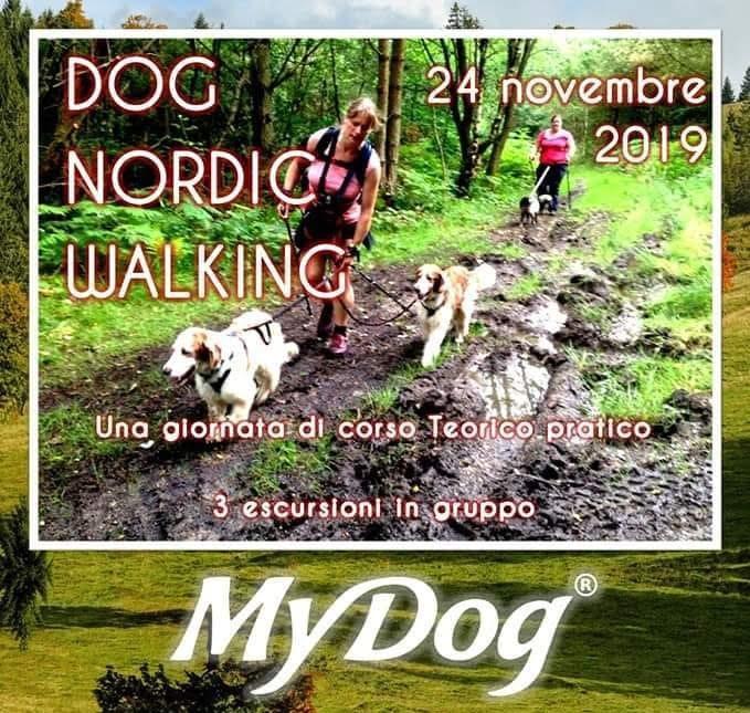 Dog Nordic Walking