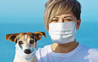 Igiene e cura del cane ai tempi del coronavirus