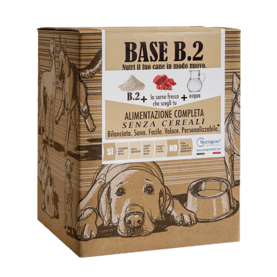 nutrigene - BASE B.2